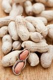 Peanuts known as also as monkey nuts in a shell Stock Photography