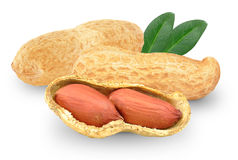 Peanuts with leaf stock photo