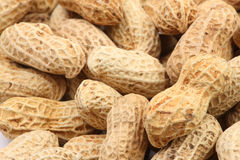 Peanuts macro 1 stock image
