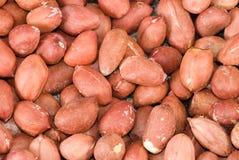 Peanuts macro. Closeup of fresh backed salted peanuts Royalty Free Stock Photo
