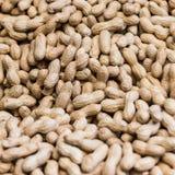 Peanuts. Macro image with full of peanuts Royalty Free Stock Image