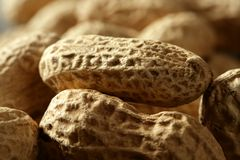 Peanuts macro over wood background Stock Photos