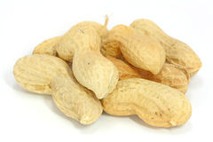 Peanuts in nutshell. On white background stock images