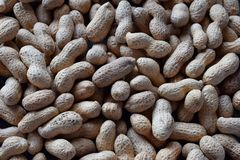 Peanuts in nutshell. Nut background. Healthy and dietary nutrition. Raw food.  royalty free stock photography