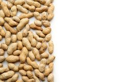 Peanuts in nutshell. On white background. Space for text Stock Photo