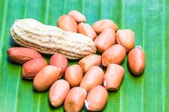 Peanuts. And peanut shells are placed on banana leaves Royalty Free Stock Images