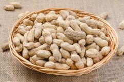 Peanuts in the peel on a light burlap. stock photo