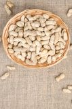 Peanuts in the peel on a light burlap. stock photography