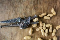 Peanuts in a peel and vintage Nutcracker dragon royalty free stock images