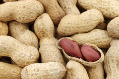 Peanuts and a peeled one Royalty Free Stock Photos