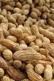 Peanuts pile Royalty Free Stock Image