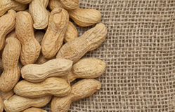 Peanuts on sackcloth Stock Photography