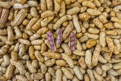 The peanuts for sale in Thai fresh market Royalty Free Stock Photography