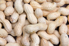 Peanuts seen up close Stock Photos