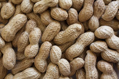 Peanuts In Shell. Background of raw peanuts in shell stock photo
