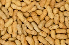 Peanuts with shell, background, close up stock photos