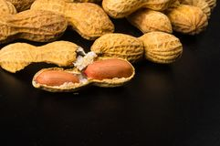 Peanuts in shell on dark background, close up. Peanuts, Arachis hypogaea, in shell on dark background, close up, selective focus Royalty Free Stock Image