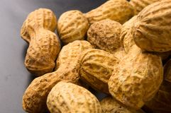 Peanuts in shell on dark background, close up. Peanuts, Arachis hypogaea, in shell on dark background, close up, selective focus Stock Photography