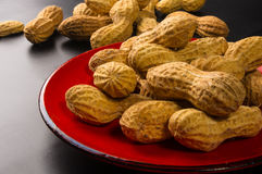 Peanuts in shell on dark background, close up. Peanuts, Arachis hypogaea, in shell on dark background, close up, selective focus Stock Image