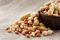 Peanuts in the shell and peeled close-up in cups. Roasted peanuts in their shells and peeled against a brown cloth stock photography