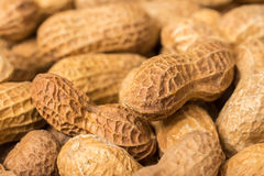 Peanuts In Shell stock photography