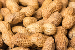 Peanuts In Shell stock image