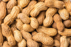 Peanuts In Shell stock photos