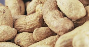 Peanuts in the shell roasted. Pile of peanuts in the shell roasted stock video footage
