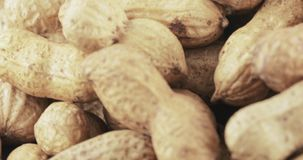 Peanuts in the shell roasted. Pile of peanuts in the shell roasted stock footage