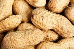 Peanuts in shell texture background Royalty Free Stock Image