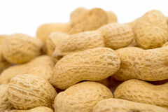 Peanuts in the shell royalty free stock photo