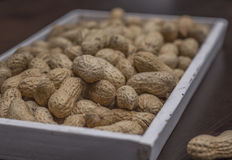 Peanuts. In shell white wood Stock Images