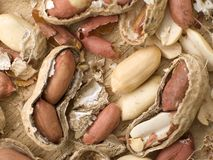 Peanuts and Shells. This is a composition of some cracked opened peanut shells royalty free stock photography