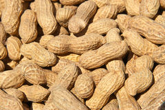 Peanuts in shells background Royalty Free Stock Images