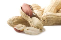 Peanuts  in shells Stock Photography