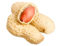 Peanuts with shells Stock Image