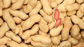Peanuts in shells. Many peanuts in shells And Peeled peanut Stock Photo