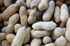 Peanuts in shells, one upon the other Royalty Free Stock Photo