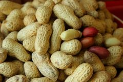 Peanuts in the skin Stock Photos