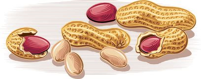 Peanuts, some without shell. Leaning against a table stock illustration