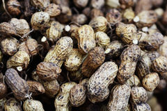 Peanuts. Are suitable for a backdrop Royalty Free Stock Photography