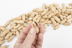 Peanuts on the table. Peeling some peanuts on the table royalty free stock photo
