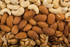 Peanuts, walnuts, almonds, hazelnuts and cashews nuts Royalty Free Stock Photos