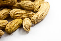 Peanuts on white background Stock Photography