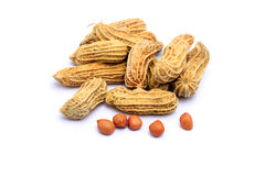 Peanuts on white background Stock Images