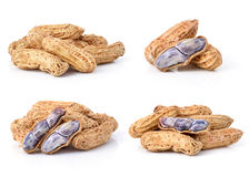 Peanuts on white background Royalty Free Stock Photos