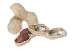 Peanuts  on white Royalty Free Stock Photography
