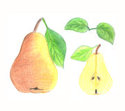 Pear Royalty Free Stock Photo