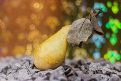 Pear Royalty Free Stock Image