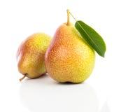 Pear Arkivfoton